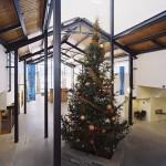 Emmanuel Baptist Church Christmas Tree